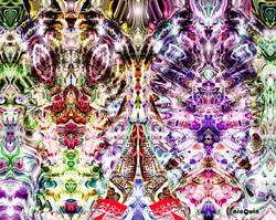 niuQuin - Namaste Universal