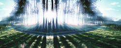 niuQuin Forest Alfa Athens