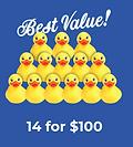 14 Ducks.png