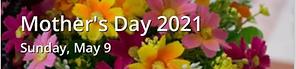 Screen Shot 2021-03-29 at 10.58.30 AM.pn