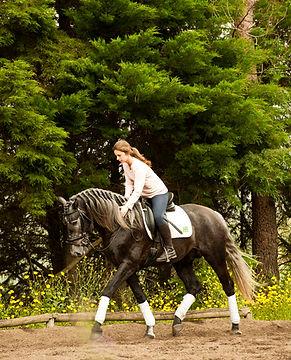 equestrian tourism with Lusitano horses