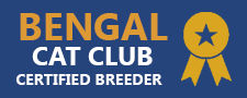 Bengal cat club.jpg