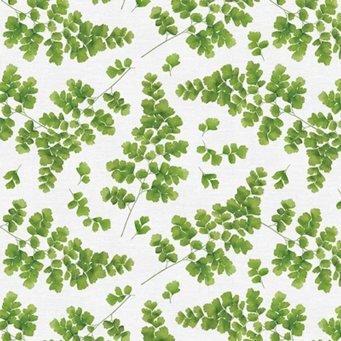 Modern Botanicals GREEN MAIDENHAIR