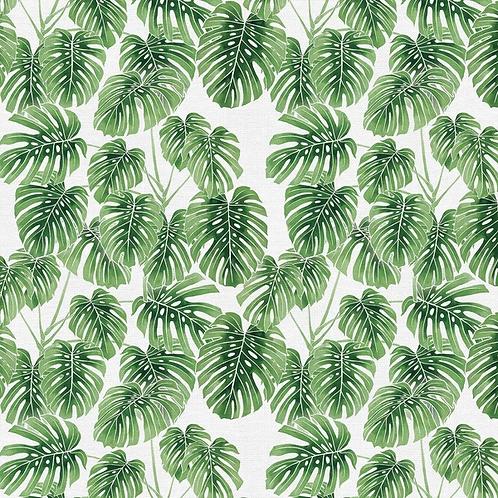 Modern Botanicals GREEN MONSTERA