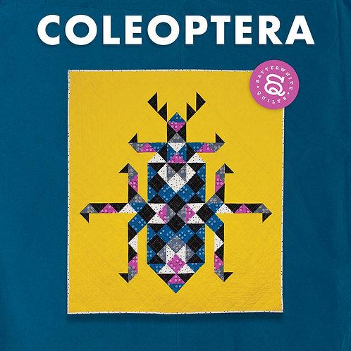 COLEOPTERA PATTERN