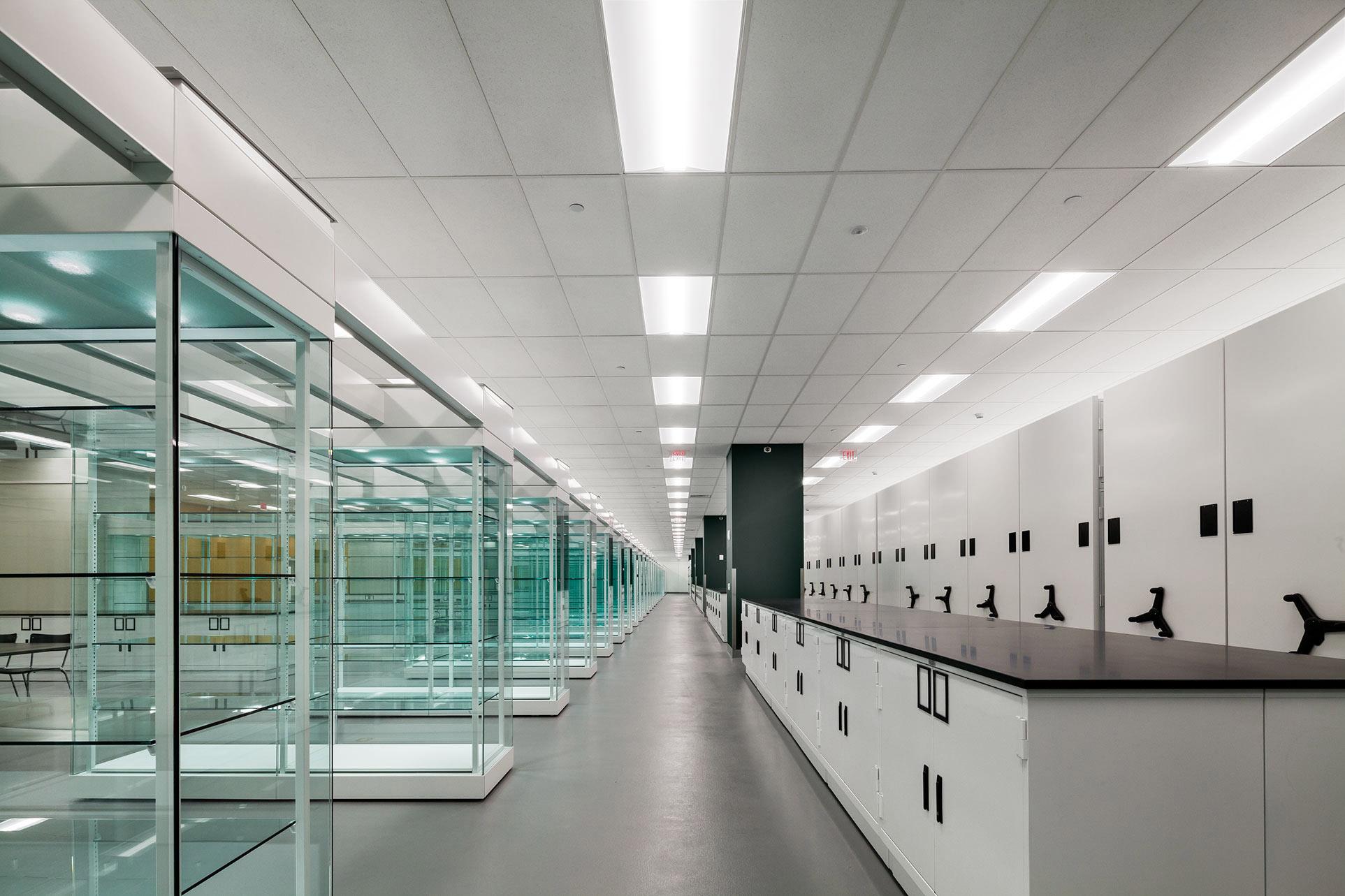 custom-museum-cabinets-compactors