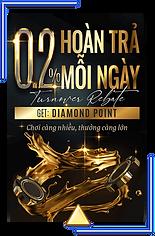 0.2diamond.png
