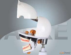 dental simulation manniquin15.jpg