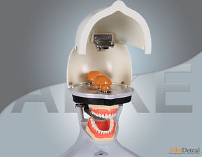 dental simulation manniquin33.jpg