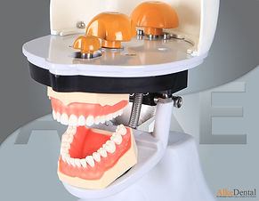 dental simulation manniquin30.jpg