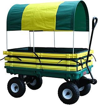 wagon kids.jpg