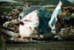 NEIRYNCK 310x460 LJ.jpg
