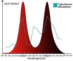 Red Light Spectrum Graphic.jpg