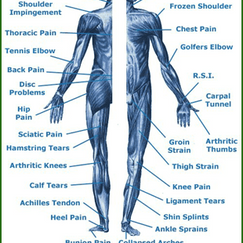 Neuromuscular Therapy Chart.png