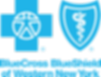 BCBS_4C_2995CP_BOLD_Web (1).png