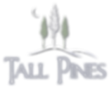 Tall Pines Branson Vacation Rentals, branson place to stay