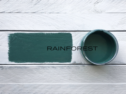'RAINFOREST' MINERAL PAINT
