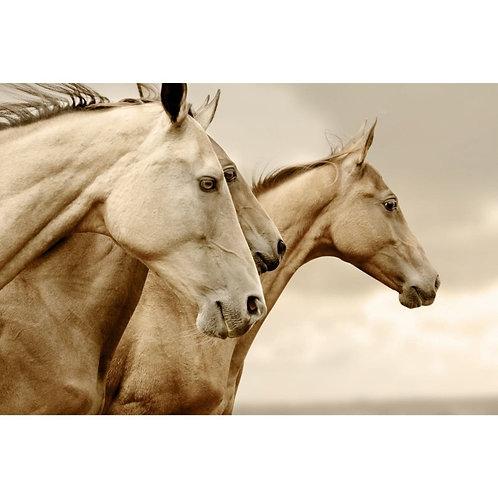 'SEPIA HORSES' DECOUPAGE PAPER