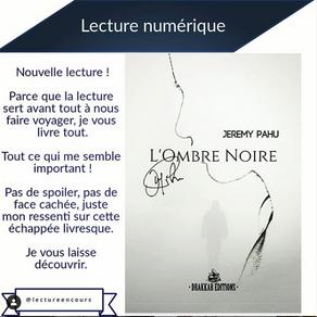 """Partenaire """"Lecture en Cours"""""""