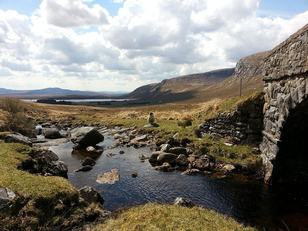 Donegal Ireland Travel Nature