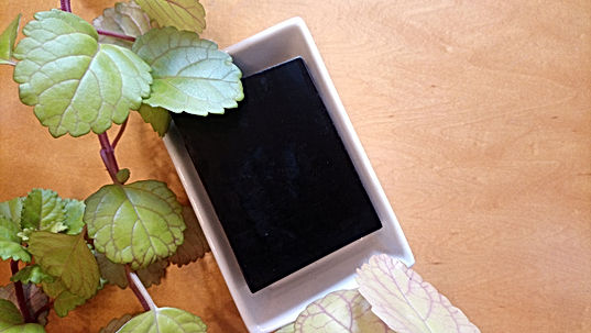charcoal-face-soap-with-plant.jpg