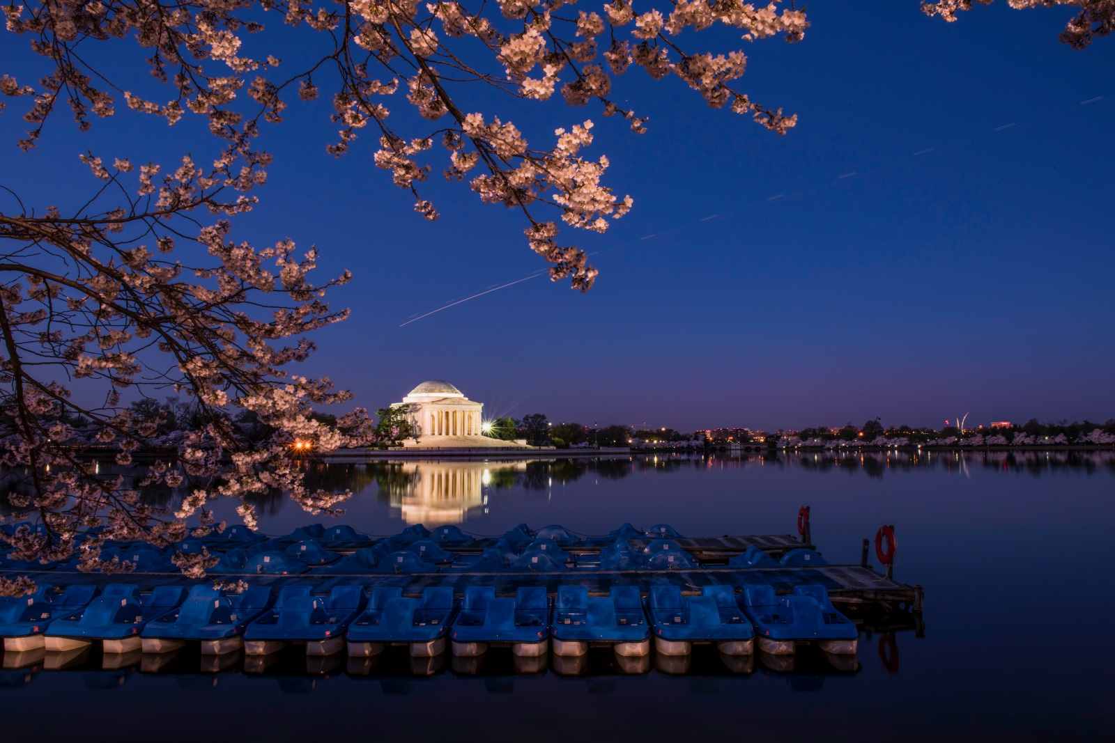 Spring Night of Tidal Basin