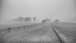 Into the Fog / Edition