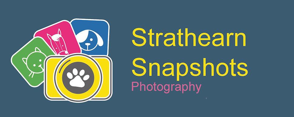 SS Colour logo webbackgroundpsd.jpg