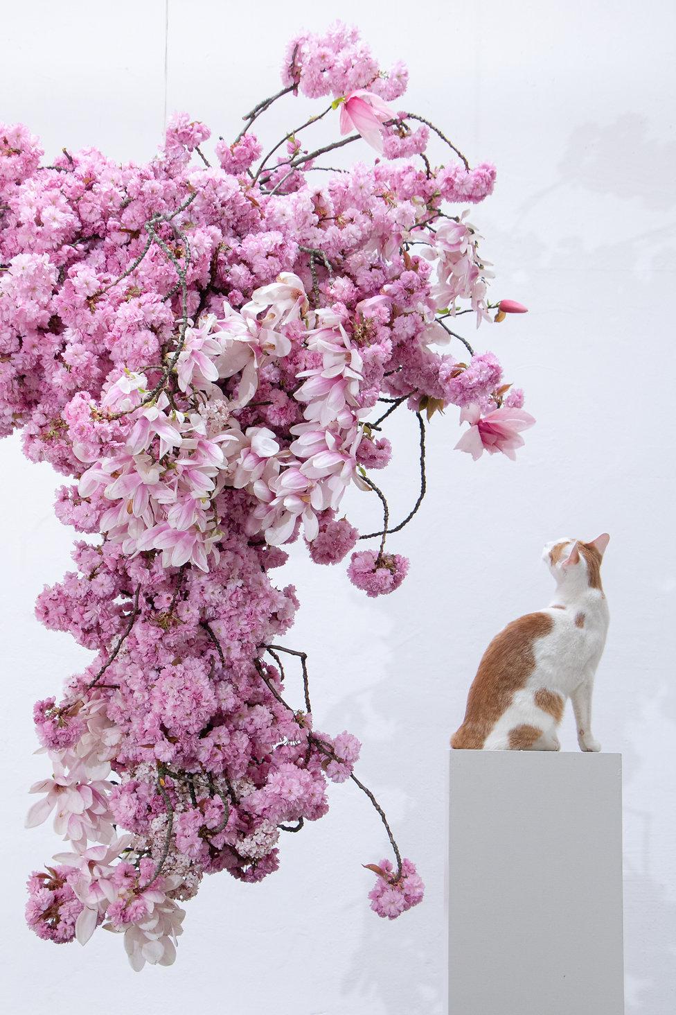 Floral Installation by Carolin Ruggaber.jpg