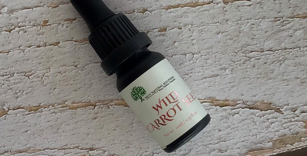 Wild Carrot Seed Essential Oil