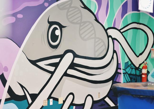 Wall #66 Aquaponics & You