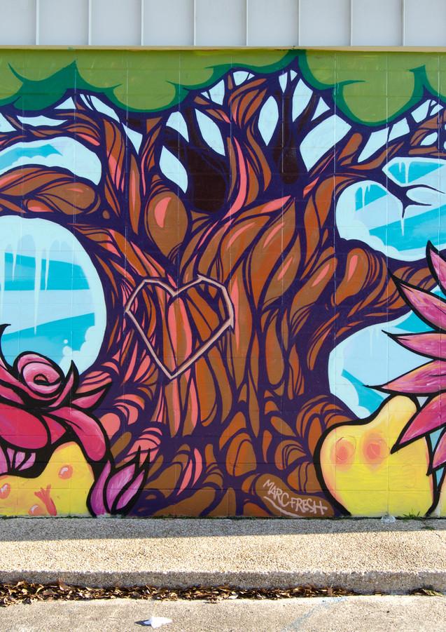 Wall #22 BREC Blueberry Street Park