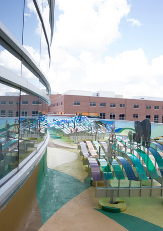Wall #60 Woman's Hospital NICU Rooftop