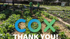 Another Step Closer: Cox awards $10,000 in support of Baton Roots Expansion