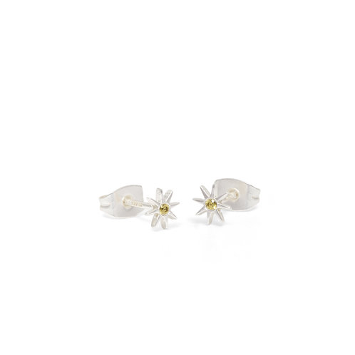 Star and stone Studs