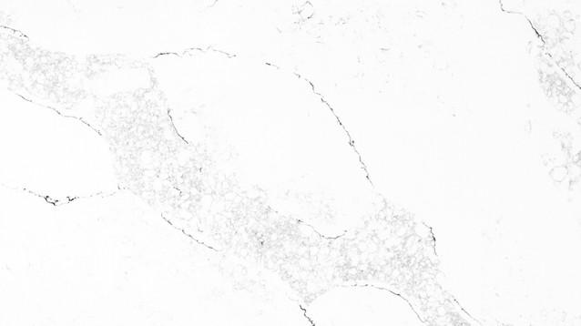 LS410 Calacatta Arina detail.jpg