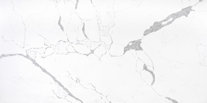 LS420-Calacatta Vita