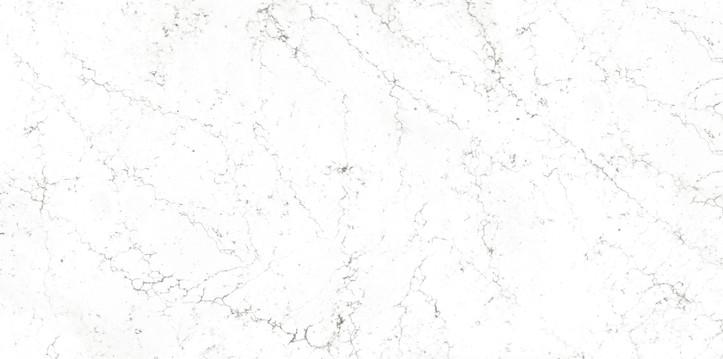 LS413 Starry White flat 1.jpg