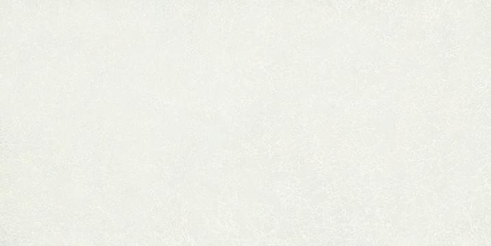 LS362 Frosty White.jpg