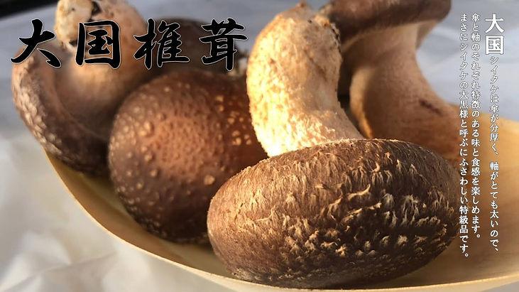 大国椎茸.jpg