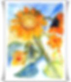 Blumen_2011017001.JPG