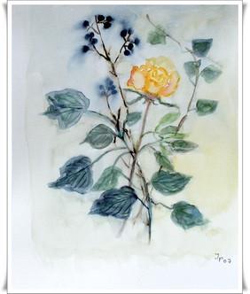 Blumen_2009011001.jpg