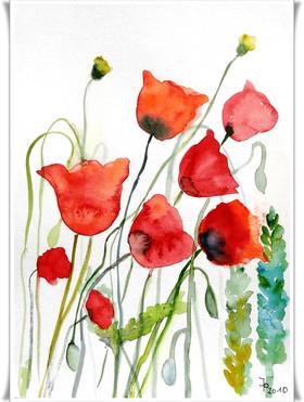 Blumen_2011012001.JPG