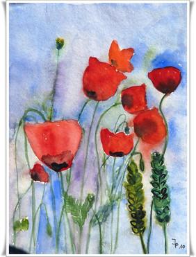 Blumen_2011010001.JPG