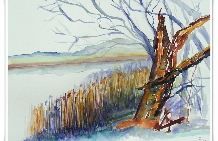 Landschaften_2009004001.jpg