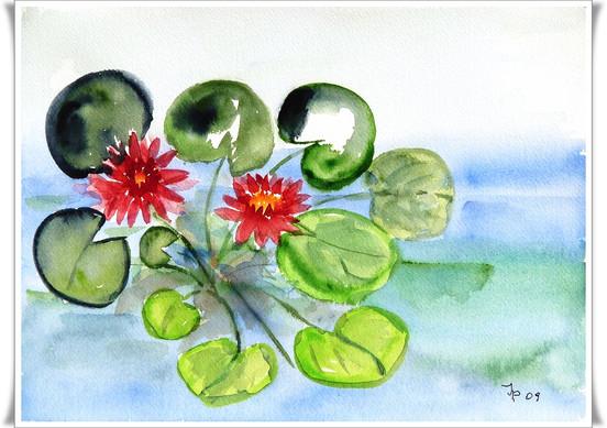 Blumen_2011006001.JPG