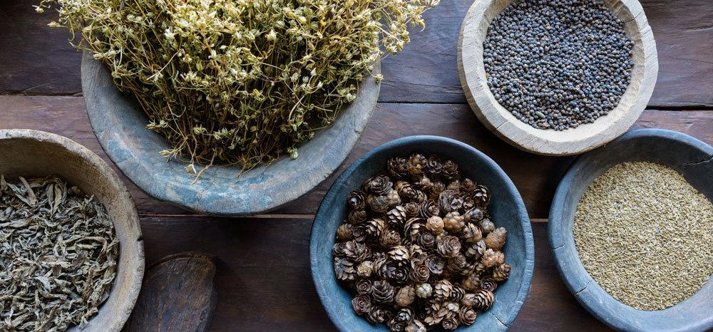 Herbs .jpg