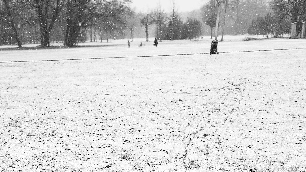 PS_Winter_100dpi (1 von 6).JPG