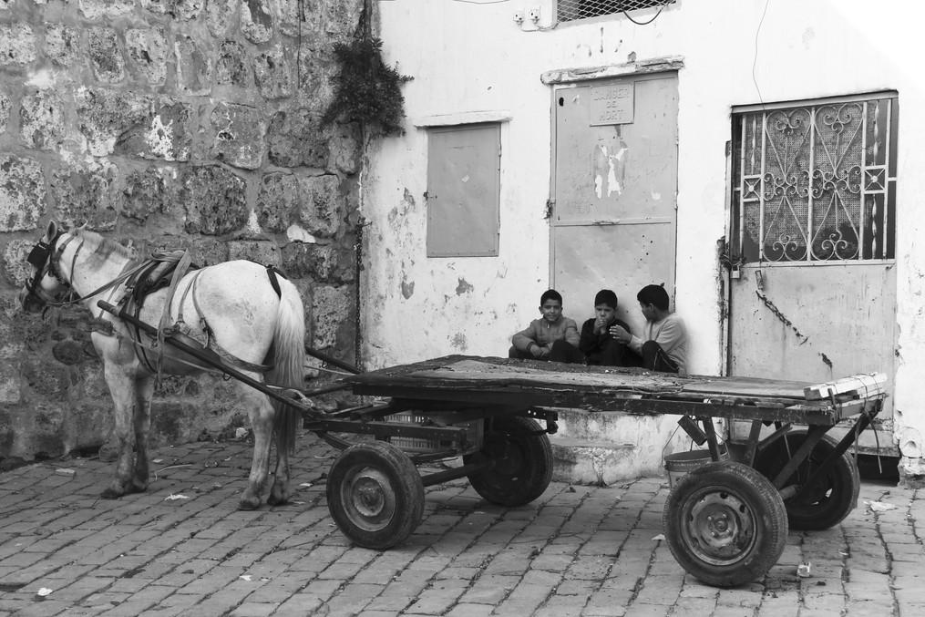 S1-1 Bizerte boys with cart.JPG