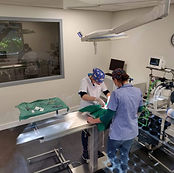Operatie in OK2.jpg